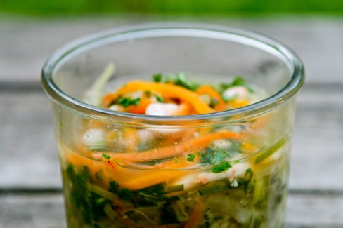 Fedtforbrændings suppe med gulerod og rejer