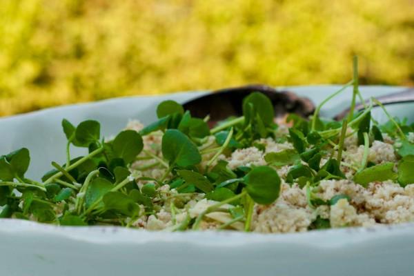 Falsk couscous med blomkål, mandler, citron og parmesan