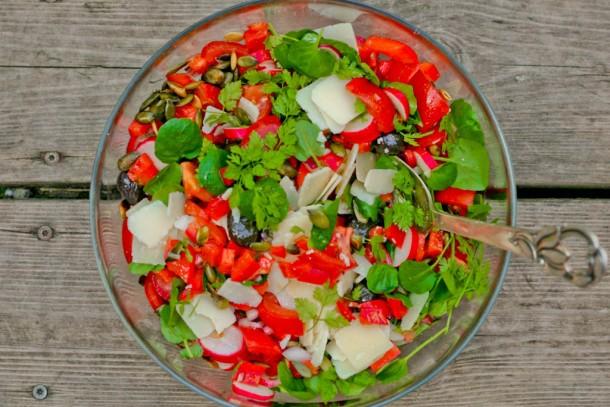 Spicy rød salat med knas og friske krydderurter 4