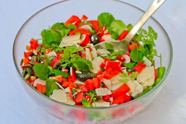 Spicy rød salat med knas og friske krydderurter 1