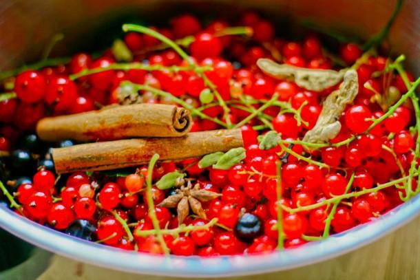 Krydret solbær- og ribsgelé uden sukker 5