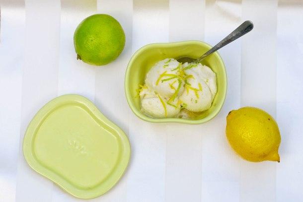 Citrus Vanilje Sorbet-2