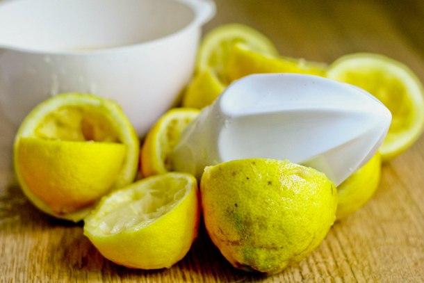 Citrus vanilje sorbet