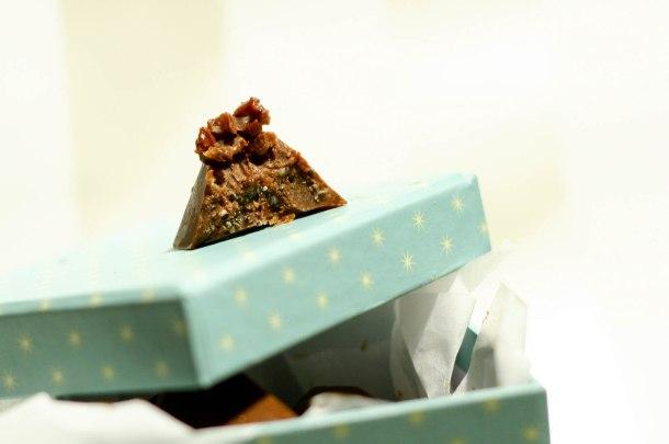 Chokoladebombermed chiafrø og kakaonips-3