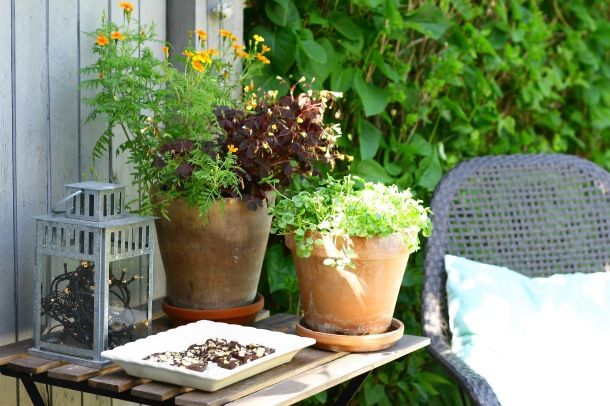 Chokoladebrud med flagesalt, hassel- og pistacienødder